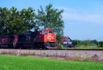 CN 8819 leads NS 38Q