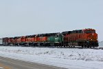 BNSF 6667 Leads a great Consist of power.
