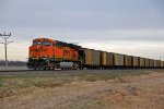 BNSF 5969 Dpu on a SB coal load.