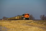 BNSF SD70Ace rips on a coal load.