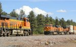 BNSF 6635 meets BNSF 6569
