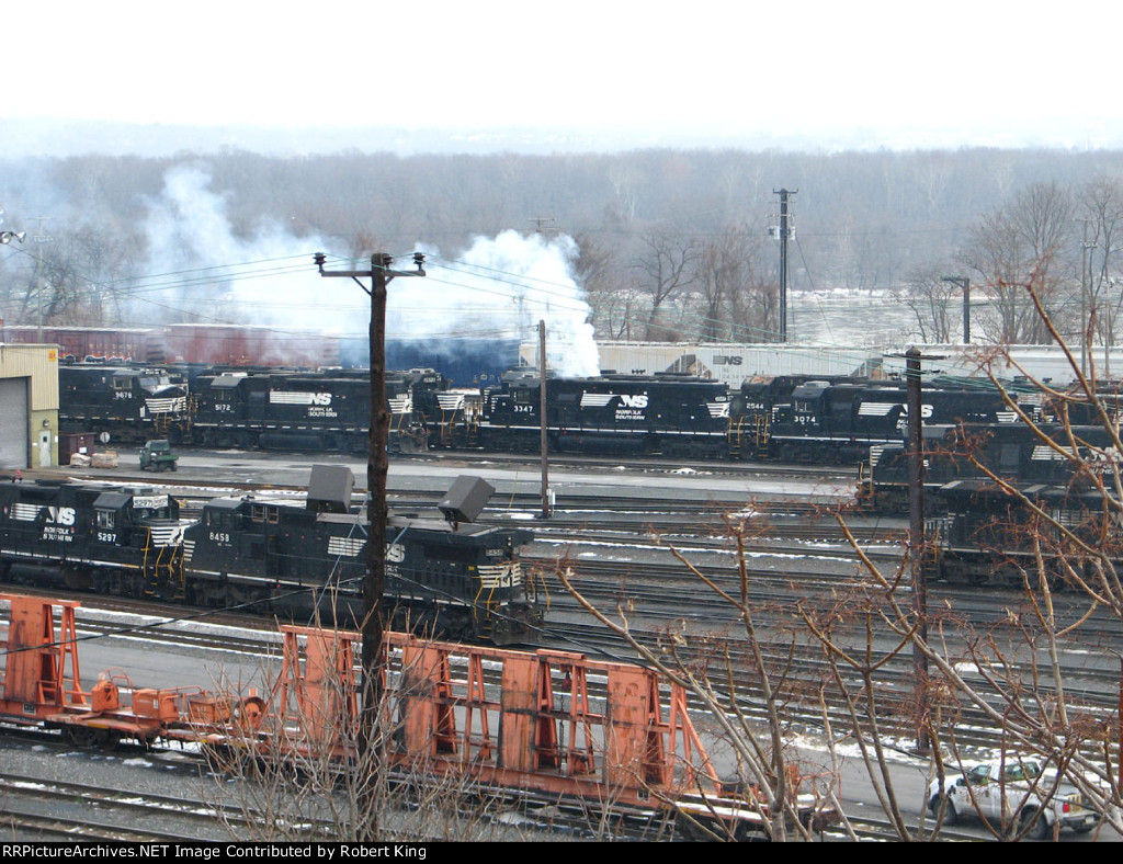 NS 3347 Putting on a Show