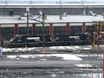NS 5519 and NS 5510