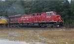 CP 8904 in the rain