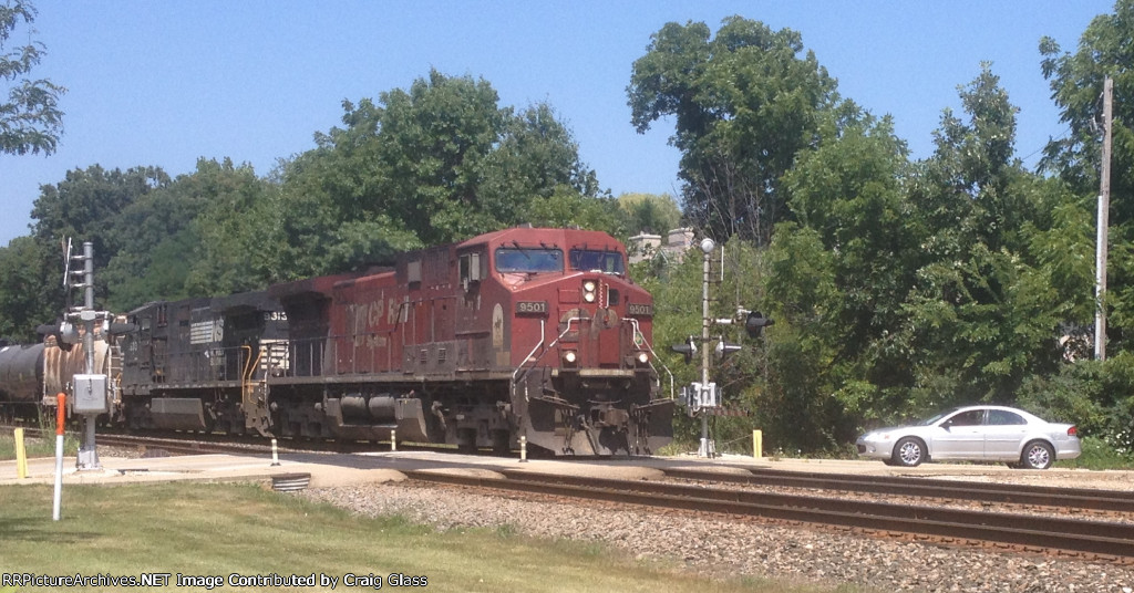 CP 9501 leads an unlikely pairing in the hazy heat