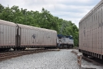 Amtrak 511 switches some autoracks