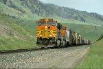 BNSF 4554 West Bozeman Pass