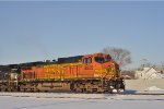 BNSF 4529 East