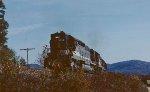 NS train #187 from Spartanburg