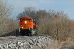 BNSF 9029 Brand new Ace.