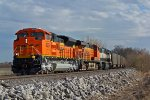 BNSF 9029 There nice when there clean!