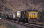 UP 4625 on short intermodal