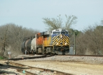 Nothing like a train horn to get a cat to move! CREX 1212