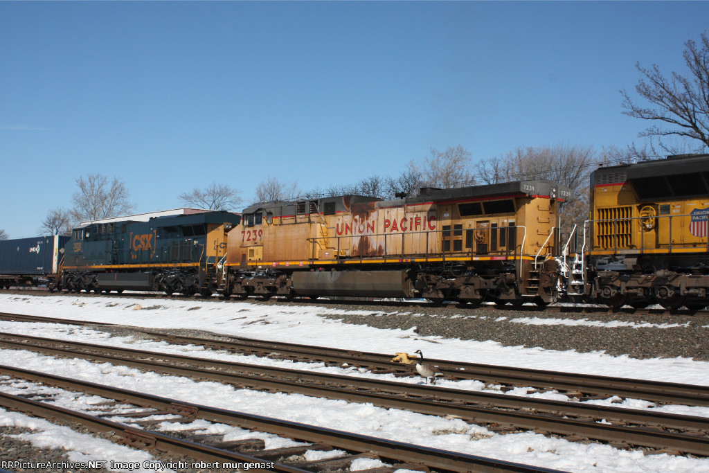 q 008 south bound intermodal 1:05 pm pic (2)