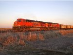 BNSF 5987 and 6152