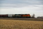 BNSF 4741 Waits in a corn Field.