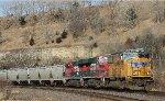 Ferromex Unit Train