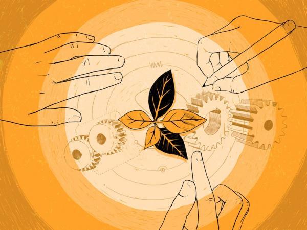 Diseño de Liliana Ospina.