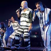 Imagen tomada de www.garuyo.com