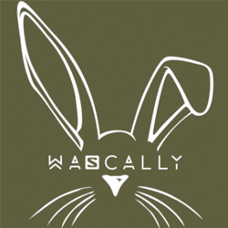 Salomon Wascally Wabbit