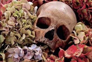 Flowers_Skulls_Contacts_DavidBailey_L