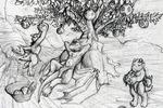 Drubu_tree
