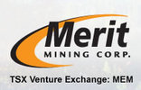 Merit_logo