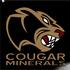 Cougar_minerals