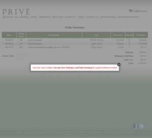 Detail Image of Portfolio item Checkout System - image 1