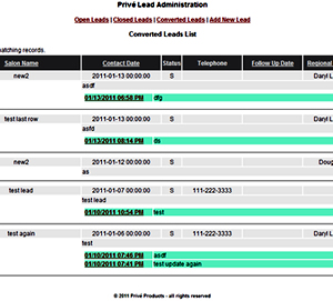 Detail Image of Portfolio item Customer Lead System - image 1