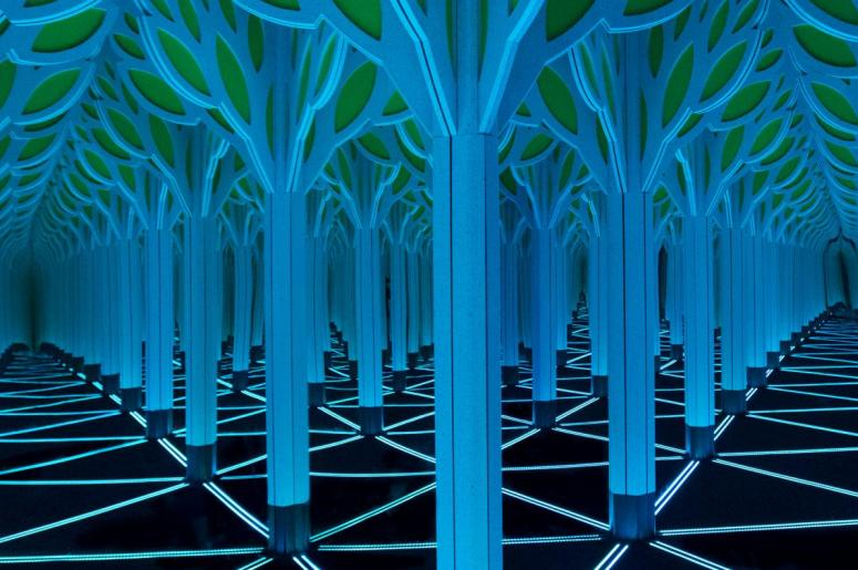 A Mirror Maze: Numbers in Nature at the MOS