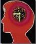 IQ Brain Clock