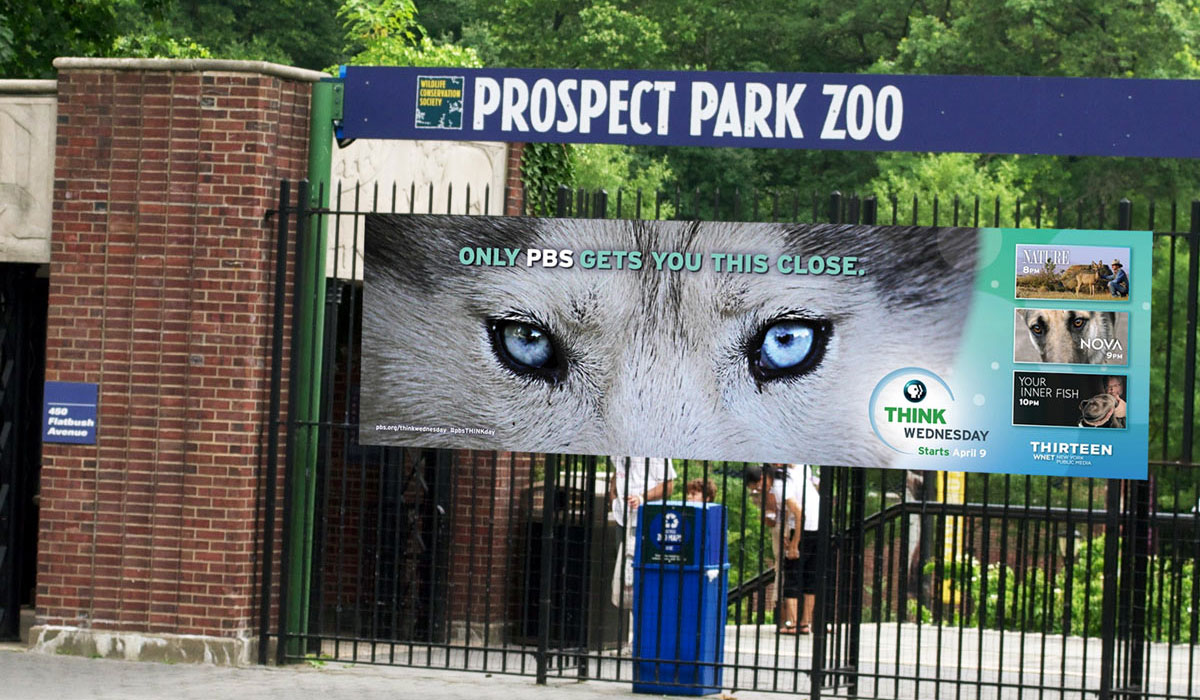PBS: Think Wednesday Zoo Ad