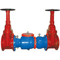 """2"""" Wilkins 350 Double Check Valve Assembly"""