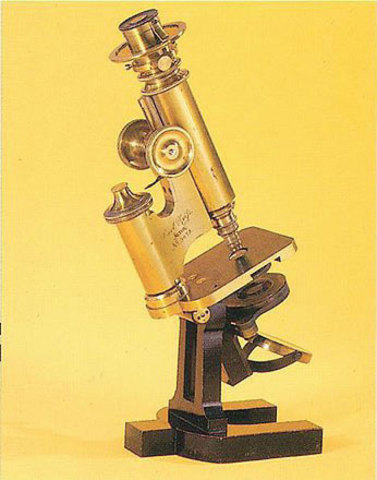 Robert Hooke built one of the first reflecting microscopes