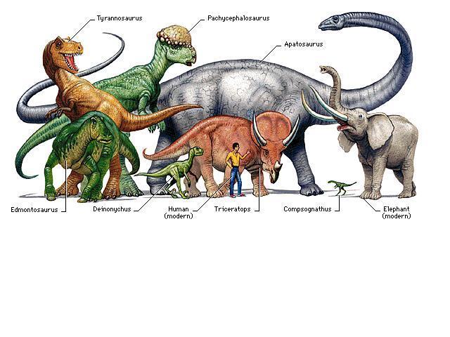 All About Dinosaurs: The Palaeozoic Era timeline | Timetoast timelines