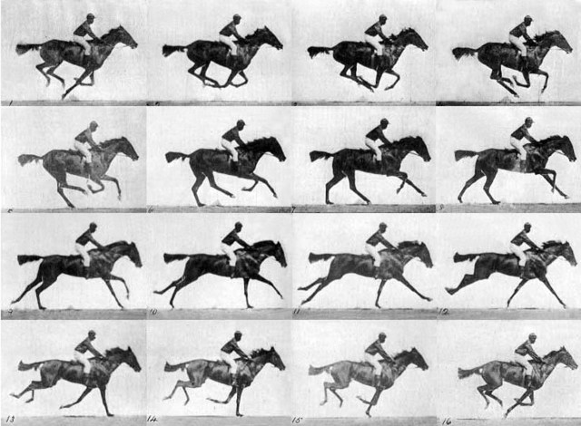 Eadweard Muybridge Horse Bet