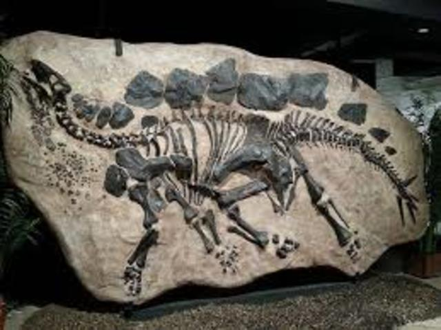 The first nearly complete dinosaur fossil is found in Haddonfield