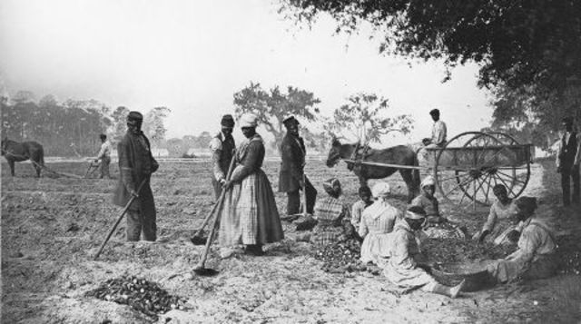 essays on slavery in the south Slavery has been a major issue in the period between 1790s and the civil war due to the interest of the white people in exploiting human's slavery lasted long than it would have lasted.