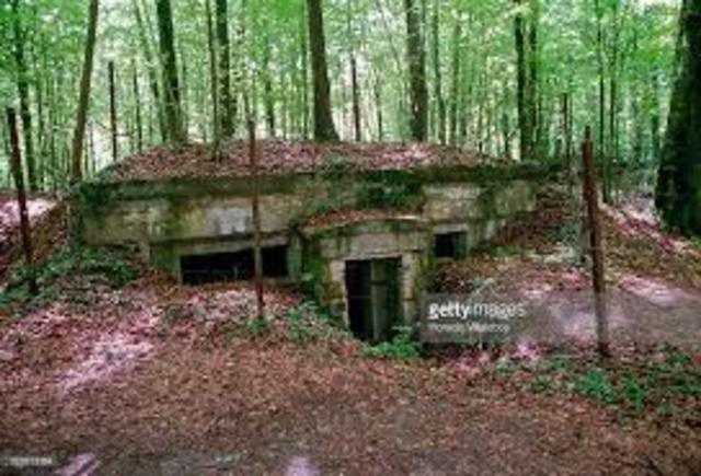 •	Battle of Argonne Forest