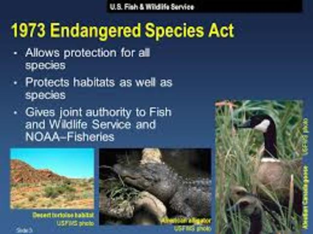 •	Engaged Species Act