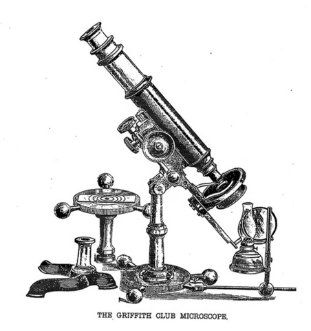 Microscope Invented