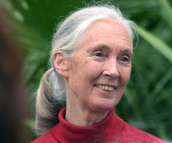 Dian meets Jane Goodall for the first time