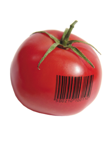 First GM food, Flavr Savr tomato is approved in the US.