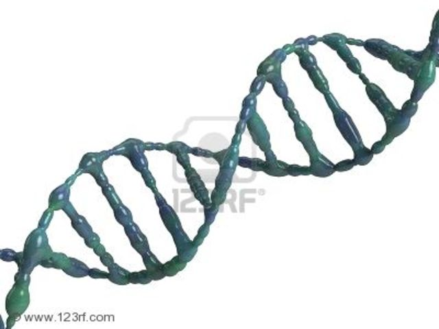 Andrei Nikdaevitch Belozersky isloates DNA for the first time.