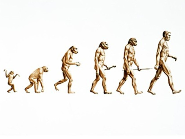 Charles Darwin came up with the theory of evolution