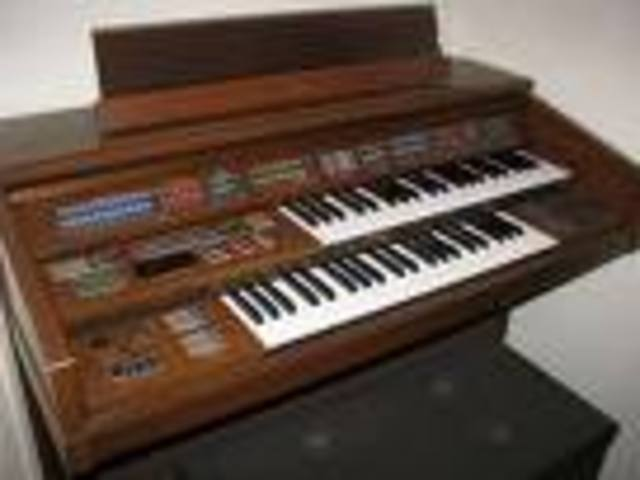 Electric organ (Canadian)
