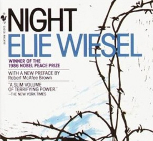 an overview of the horryfying life experience by the author in the novel night by elie wiesel