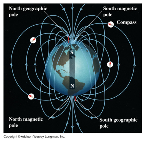 Earth's magnetic field is 3 times stronger than today.