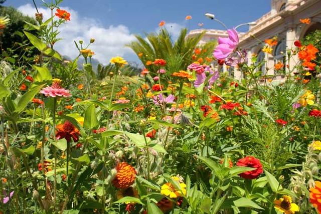 La frise historique des jardins timeline timetoast timelines for Jardin 5 thoiry